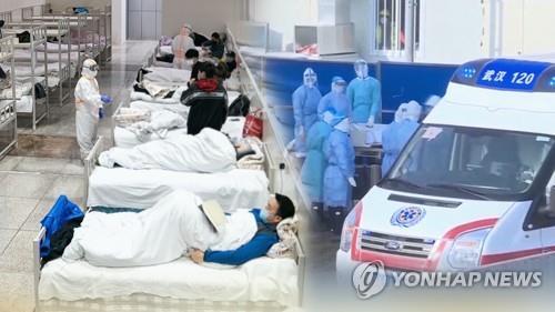 일본 정부, 해상 격리 크루즈선에  500인분 의약품 추가 공급