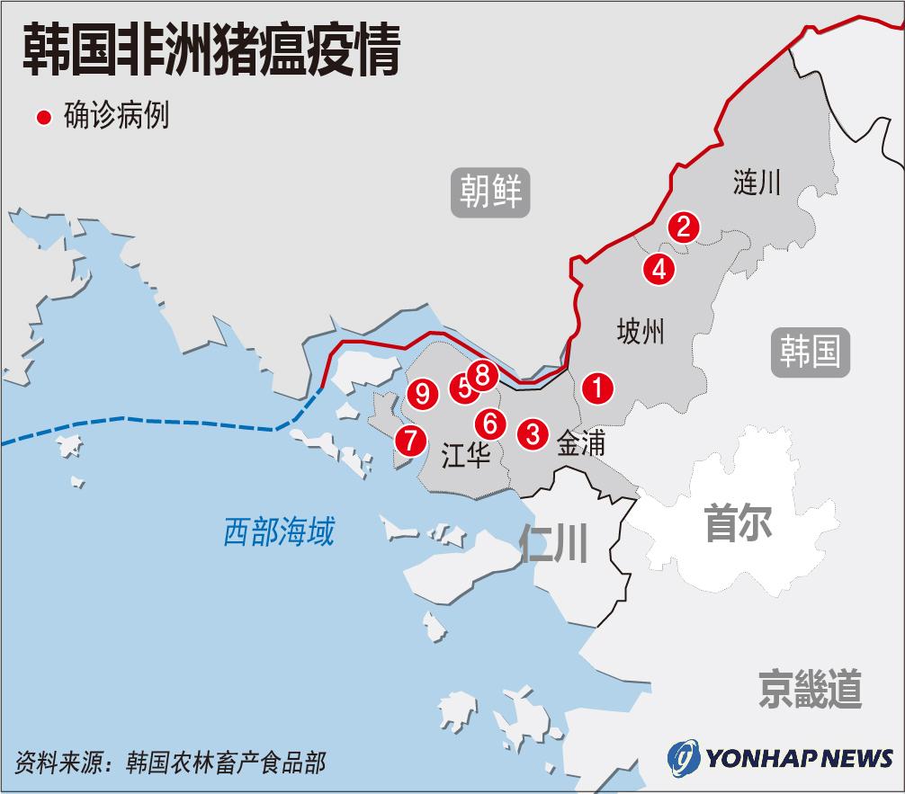 韩国非洲猪瘟疫情