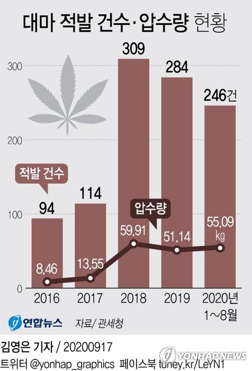 资料图片:近五年大麻走私案件和查获数量走势 韩联社