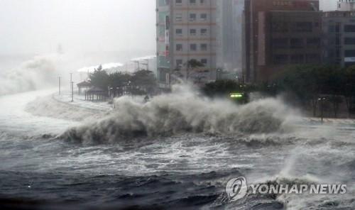 """台风""""暹芭""""袭击韩南部地区致停电停航"""