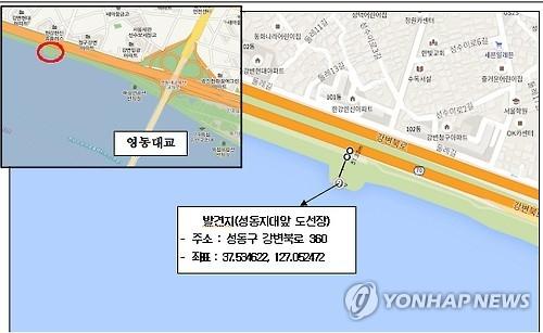 汉江野生鸟现禽流感 首尔市加强防疫