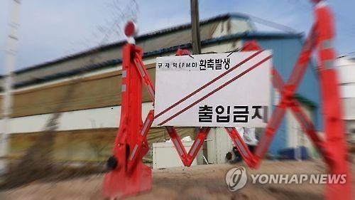 韩出现口蹄疫疫情 195头牛被宰杀
