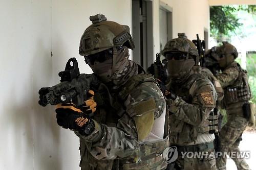 """韩国将派兵参加美泰""""金色眼镜蛇""""军演"""