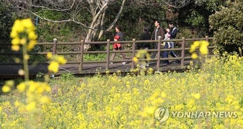 济州3月接待日本和东南亚游客同比约增8%