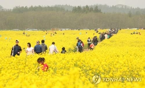 韩政府加快推进旅游客源多元化拟降低对华依赖