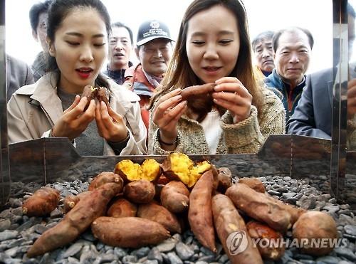 """资料图片:2015年11月19日,在全罗北道,前来参加""""第三届红薯节""""的游客品尝烤红薯。(韩联社/农村振兴厅提供)"""