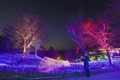"""""""山谷香""""野菜主题公园的迷人夜景(韩联社记者成演在摄)"""