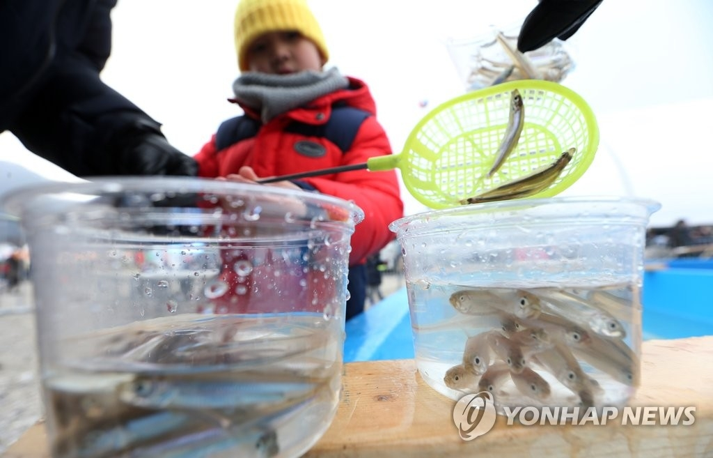 资料图片:捞冰鱼(韩联社)