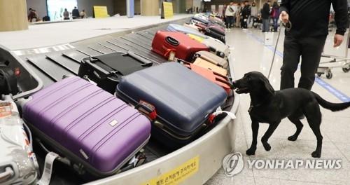 韩海关严查入境行李狠抓冬奥反恐 - 1