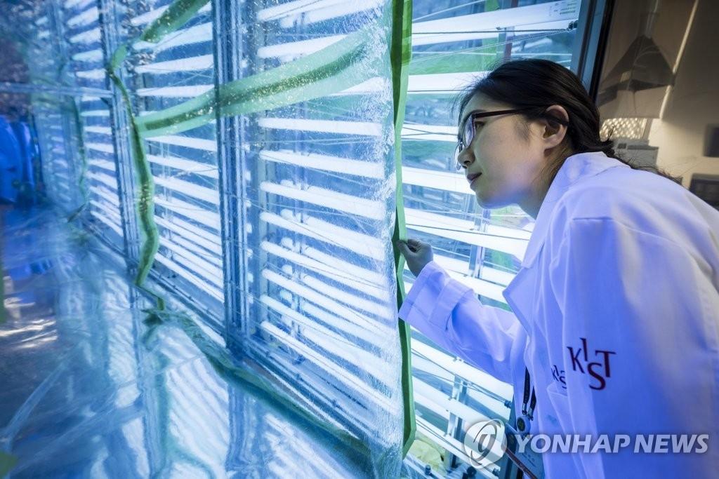 图为韩国科学技术研究院研究室的小型烟雾箱。(韩联社/韩国科学技术研究院提供)