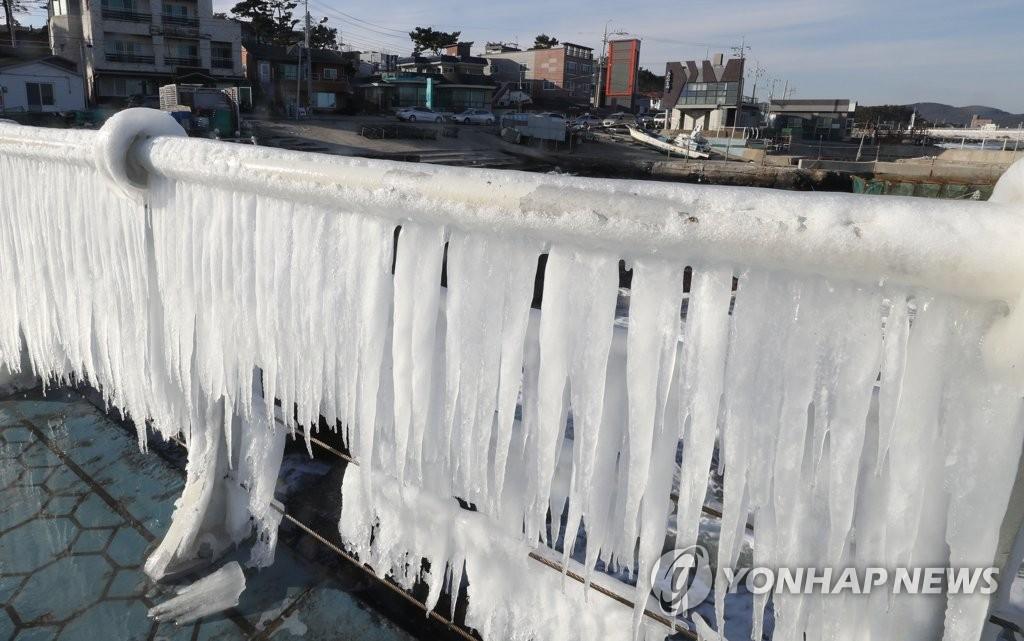 资料图片:1月25日下午,在蔚山市东区的朱田海岸路,数日严寒天气让栏杆上结满了波浪形成的冰锥。(韩联社)