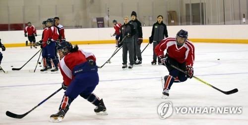 正在训练的朝鲜冰球选手(韩联社)