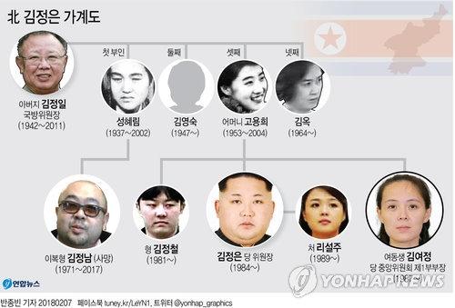 韩青瓦台:金与正访韩体现朝方缓和半岛局势意志 - 4