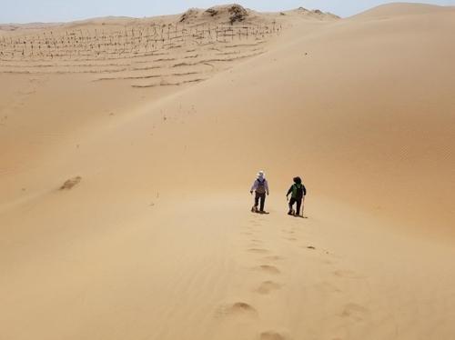 造林前的库布齐沙漠(山林厅提供)