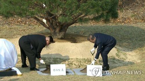 4月27日,在韩朝边境板门店,文在寅(右)和金正恩种下松树。(韩联社/韩联社TV画面截图)