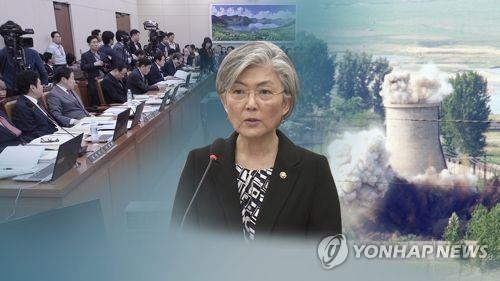 韩外长参加地选缺席投票或为随时飞赴新加坡