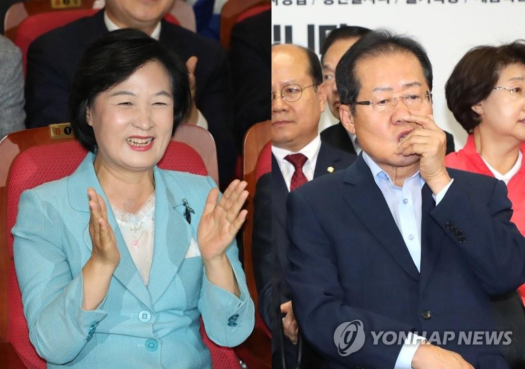 详讯:韩执政党在地选中大获全胜