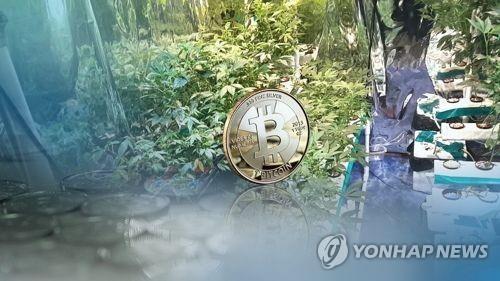 韩上半年查获毒品走私毒品案同比增六成