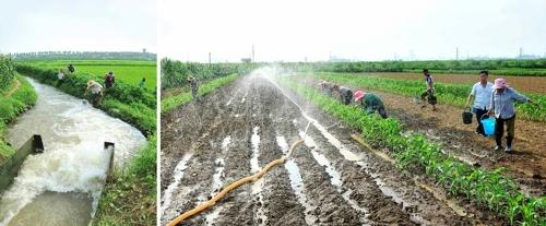 朝鲜高温干旱天气持续数周