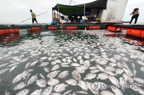 韩7月海温8年间升3度 全球变暖是主因