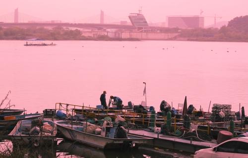 幸州渡口的渔业活动已绵延上千年。(韩联社记者成演在摄)