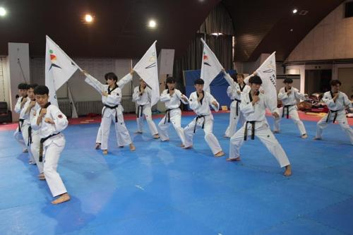韩国跆拳道示范团将再度访朝表演