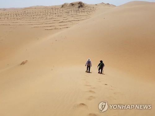 韩中近百青年下周在库布齐沙漠植树造林