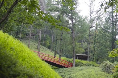 大字杜鹃花园上方的红桥分外显眼。(韩联社记者成演在摄)