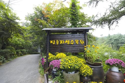 幽深僻静的长兴自生植物园(韩联社记者成演在摄)