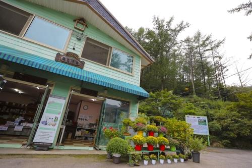 植物园食堂供应花茶和便饭。(韩联社记者成演在摄)