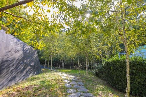 艺术中心右边的桦树林曲径通幽。(韩联社记者成演在摄)