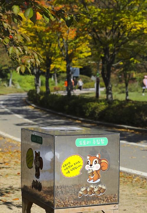 高阳湖水公园附近和平世界路边立着橡实捐赠箱,吸引行人向松鼠献爱心。(韩联社记者成演在摄)