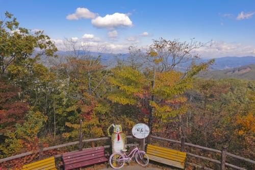 从通往画廊的小坡上观赏到的秋景(韩联社记者成演在摄)