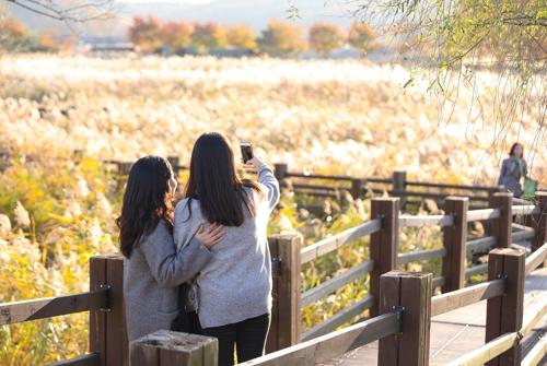 游客们在芦苇湿地公园自拍。(韩联社记者成演在摄)