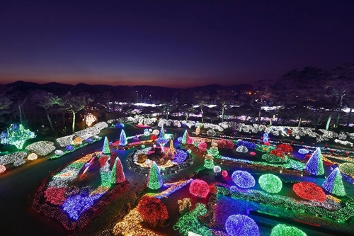 碧草池文化植物园夜景(韩联社记者成演在摄)