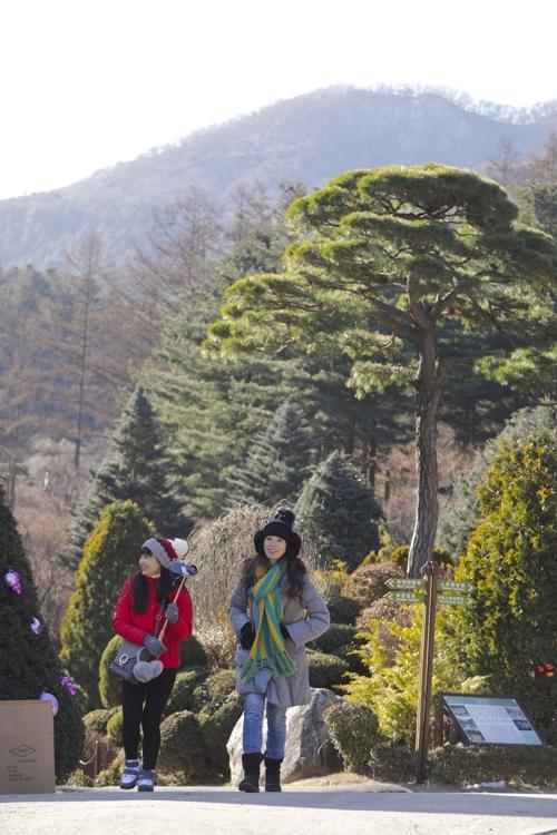 游客漫步加平晨静树木园。(韩联社记者成演在摄)