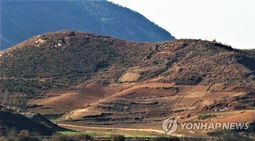 韩朝将赴华参加东北亚森林合作研讨会