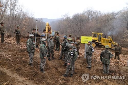 资料图片:11月22日,在韩朝军事分界线附近,韩朝军人进行遗骸发掘所需的扫雷工作。(国防部供图)