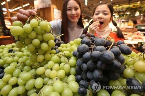 葡萄成韩国人冬季水果首选 进口量创3年来新高