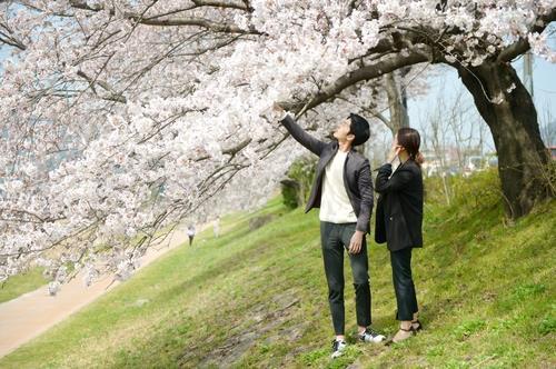 报告:韩国青年未婚率反超日本
