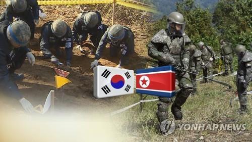 韩军下月单独进行韩战遗骸挖掘项目