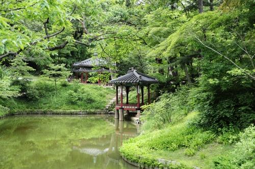 昌德宫后园(国立文化财研究所供图)