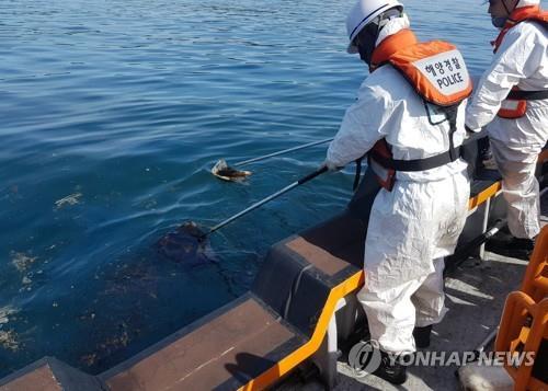中国货轮在韩国经济海域漏油船东船长被处罚金