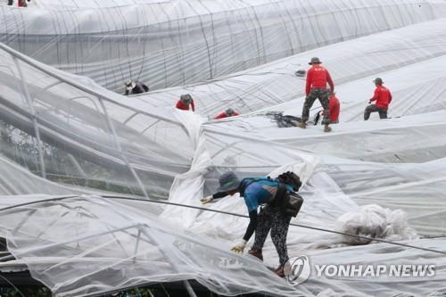 资料图片:海军陆战队士兵参与灾后重建工作 韩联社