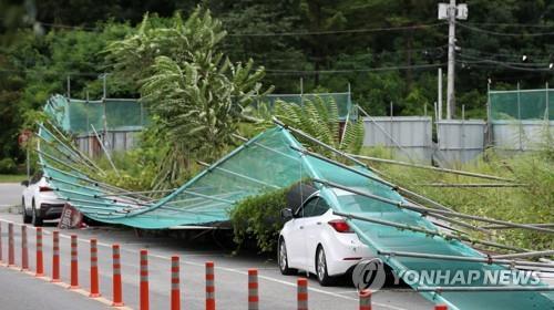 韩国各地全力开展台风灾后恢复工作