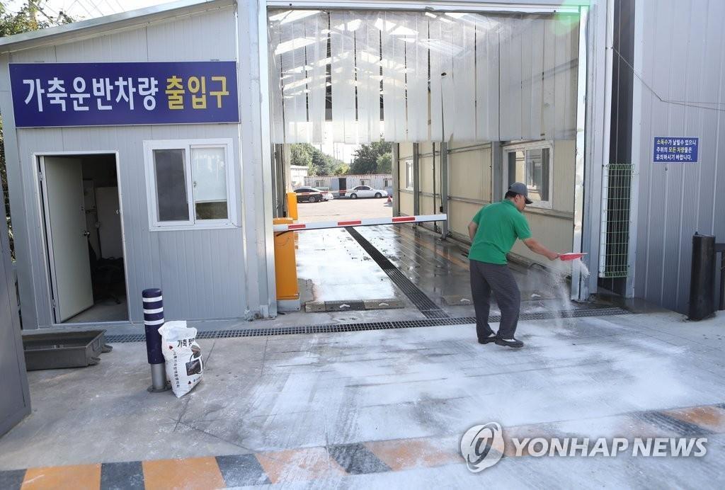 资料图片:9月25日,在庆尚北道庆山市的一家畜产品加工厂,工作人员撒用于防疫的生石灰。 韩联社