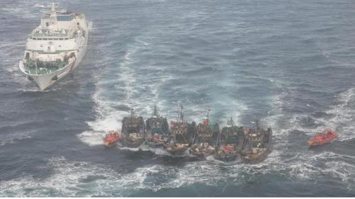韩2019年抓扣外籍侵渔渔船115艘