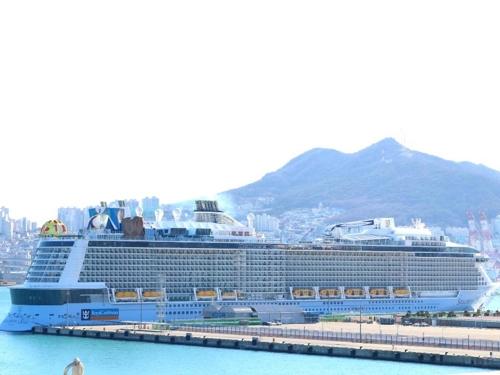 多艘赴华邮轮受新冠疫情影响掉头停靠釜山港