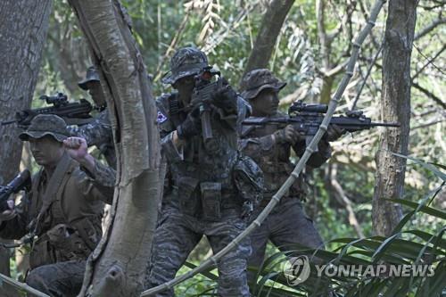 韩军正考虑不参加金色眼镜蛇联演