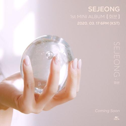 《花盆》封面 Jellyfish娱乐供图(图片严禁转载复制)